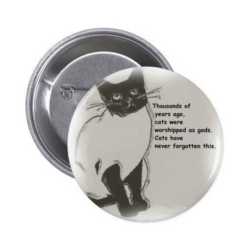 Cats are Gods Pin