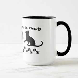 Cats Are In Charge Coffee Mugs