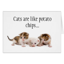 Cats Are Like Potato Chips Funny Birthday Card