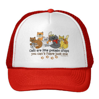 Cats are like potato chips hats