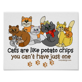 Cats are Like Potato Chips Saying Poster