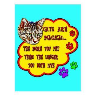 Cats Are Magical Postcard
