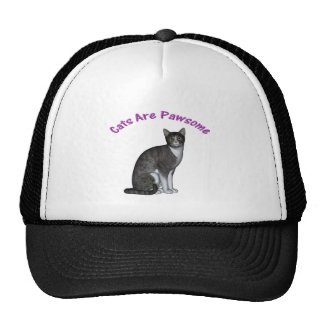 Cats Are Pawsome Trucker Hat