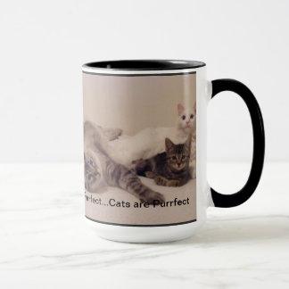 cats are purrfect mug