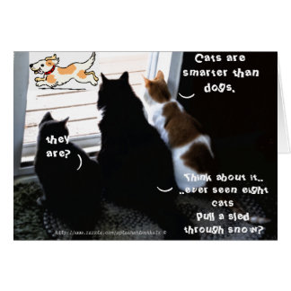 """""""Cats are smarter than dogs"""" Card"""