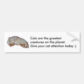 Cats are the greatest bumper sticker