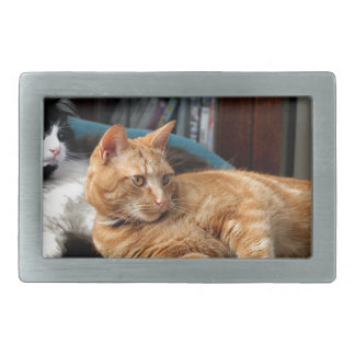 Cats Rectangular Belt Buckle