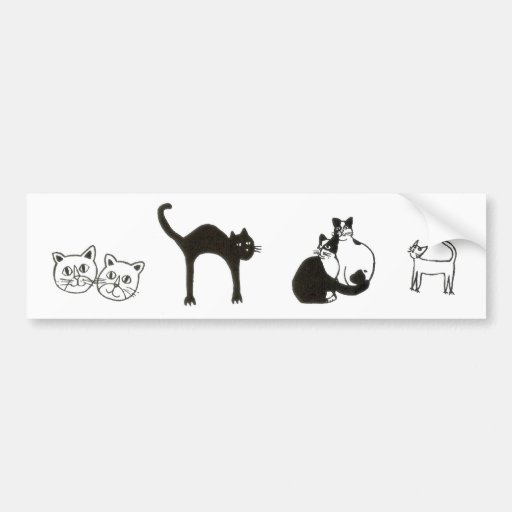 cats bumper sticker
