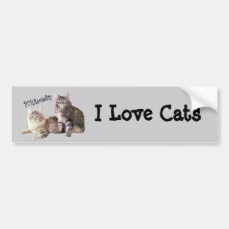 Cats Bumper Sticker PURRsonality