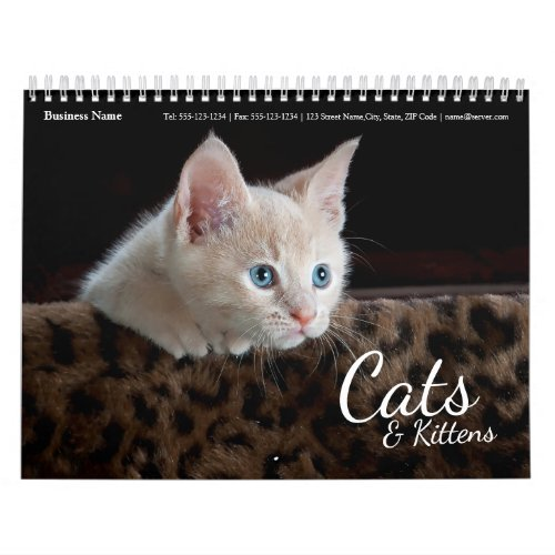 Cats Business Wall Calendar 2017