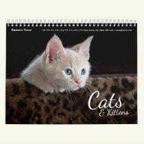 Cats Business Company Corporate Wall Calendar 2019
