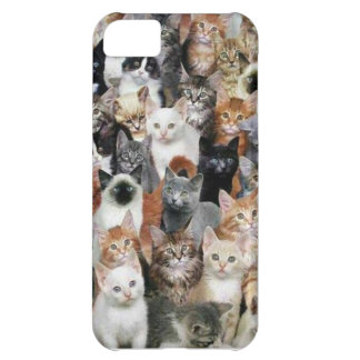 Cats Case For iPhone 5C