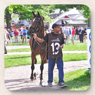 Cat's Claw wins the Waya Stakes Coaster