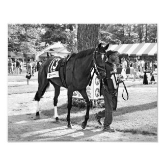 Cat's Claw wins the Waya Stakes Photo Print