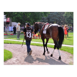 Cat's Claw wins the Waya Stakes Postcard
