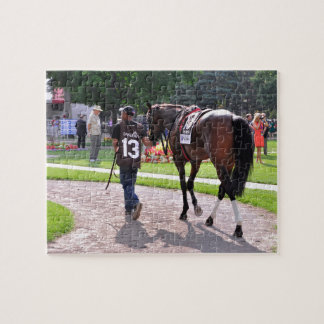 Cat's Claw wins the Waya Stakes Puzzle