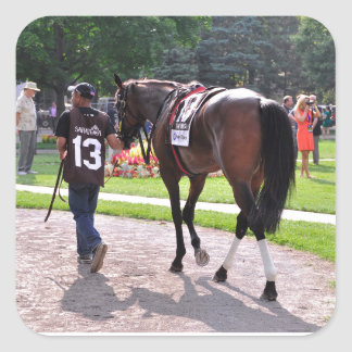 Cat's Claw wins the Waya Stakes Square Sticker