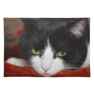 Cats Cloth Placemat