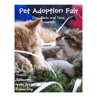 Cats Dogs Animals Adoption Event, Save a Pet Fair Flyer