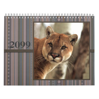Cats & Dogs Calendar Photo