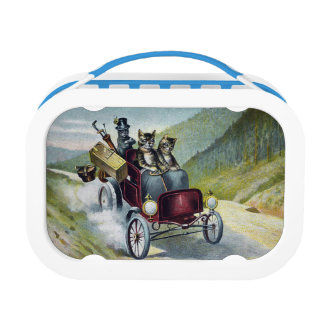 Cats Driving Through the Catskill Mountains Lunch Box