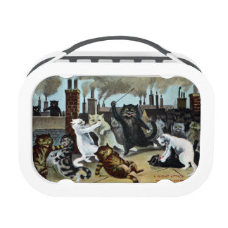 Cats Duke it Out on a Rooftop Lunch Box