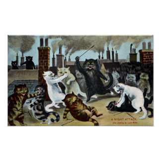 Cats Duke It Out on a Rooftop Poster