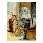 Cats Eating Roasted Chestnuts Postcard