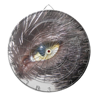 cat's eye dart board