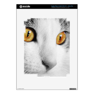 Cat's Eye iPad 3 Decals