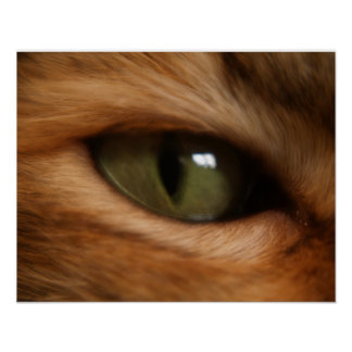 Cat's Eye of Sublimity Poster