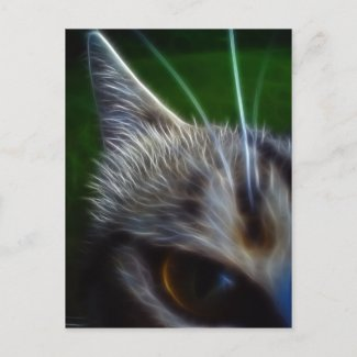 Cat's Eye Photomanipulation postcard