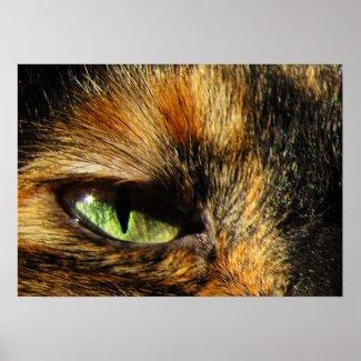 Cat's Eye Print