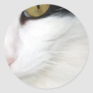 Cats Eye Stickers