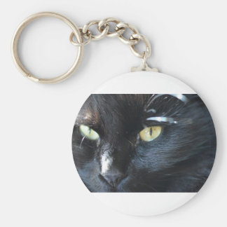 Cat's Eyeing You Keychain