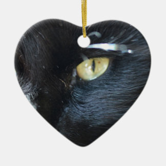 Cat's Eyeing You Christmas Ornaments