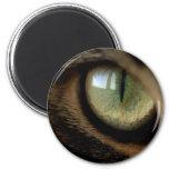 cats_eyes_05 refrigerator magnet