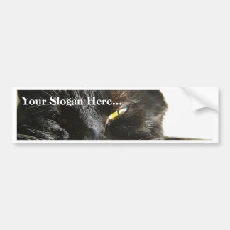 Cats Eyes Furry Whiskers Black Bumper Sticker