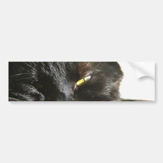 Cats Eyes Furry Whiskers Black Car Bumper Sticker