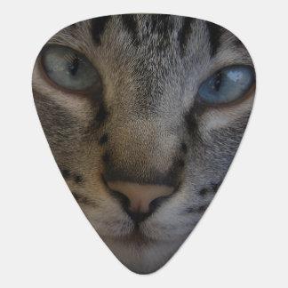 Cats Eyes Guitar Pick
