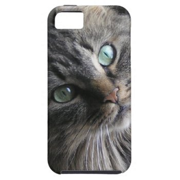 Cats Eyes iPhone SE/5/5s Case
