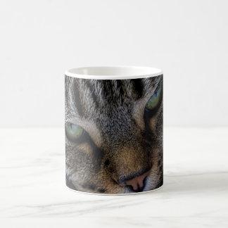 Cats Eyes Mug