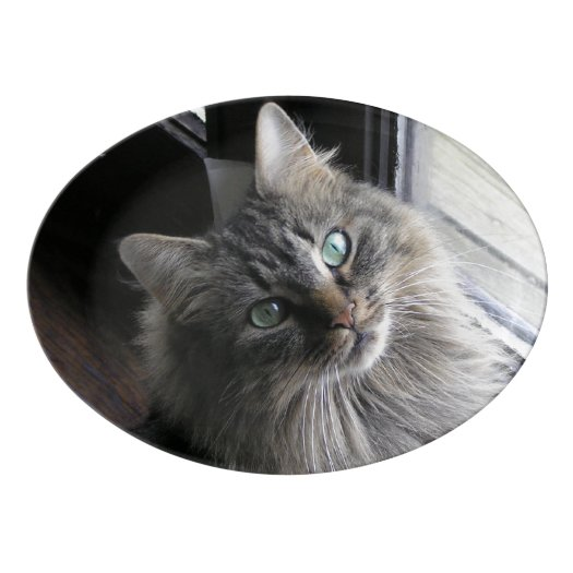 Cats Eyes Porcelain Serving Platter