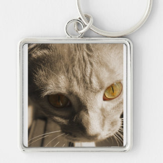 Cat's Eyes Silver-Colored Square Keychain