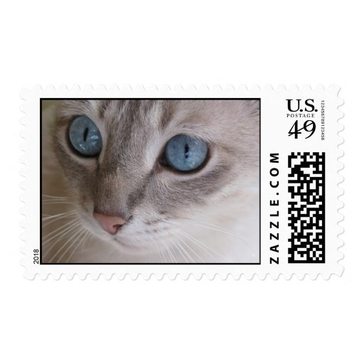 cats eyes stamps