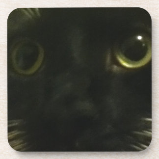 Cat's Face Drink Coasters