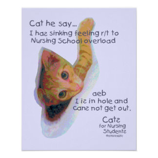 Cats for Nursing Students - I has Sinking Feeling Print