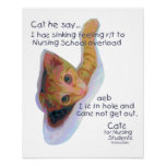 Cats for Nursing Students - I has Sinking Feeling Posters