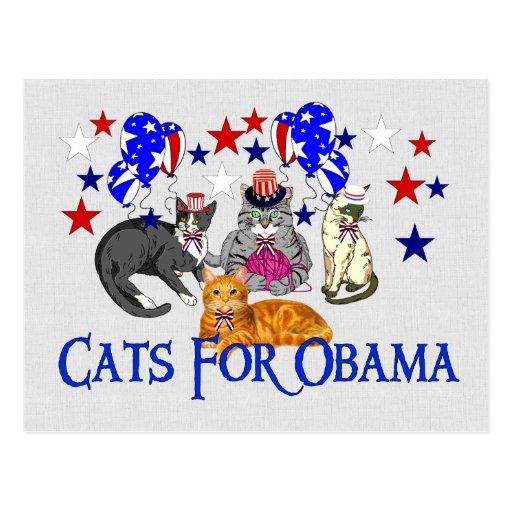 CATS FOR OBAMA POST CARD