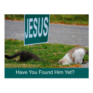 Cats Found Jesus Funny Postcard